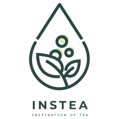 instea-logo-01